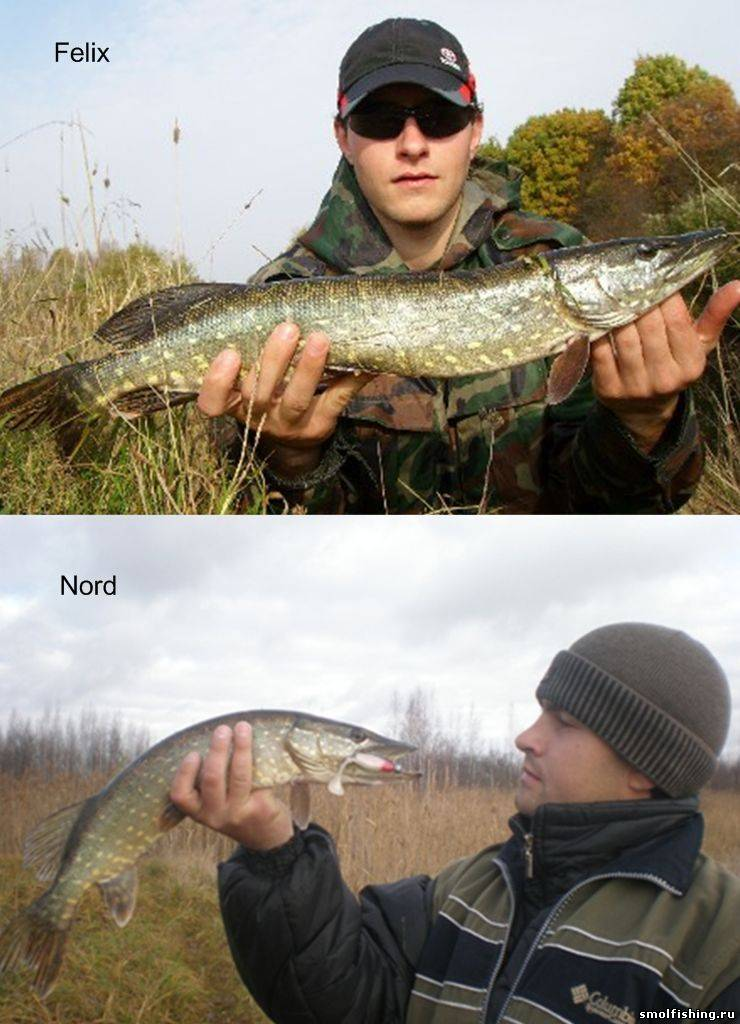 смоленск рыболовные форумы